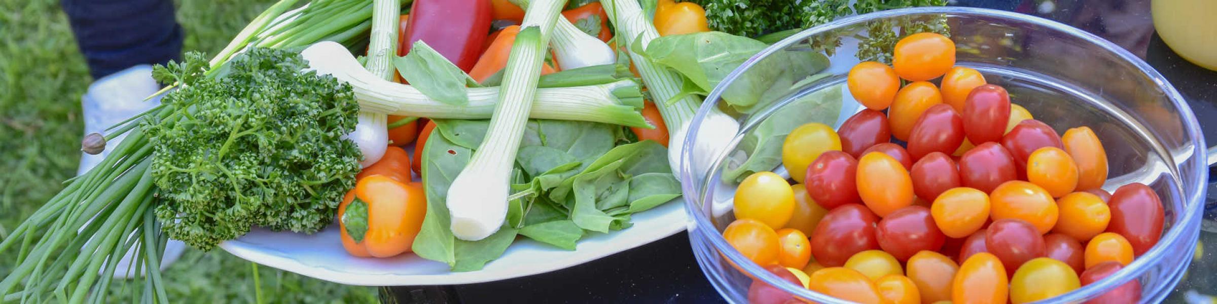 alimentation et jardin